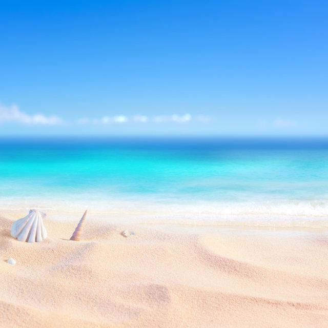 Tropical Sea Beach Sand Shell Coral Blue Sky Summer Holiday Baby Pet Scene Photographic Backgrounds Photo Backdrops Photo Studio