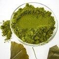 100g Orgânica Extrato de Folhas de Ginkgo Biloba Em Pó 100% Natural Yinxing Selvagem Menor Pressão Arterial Medicina Chinesa Ervas