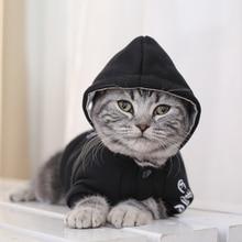 Hooded Fleece Jacket for Cats
