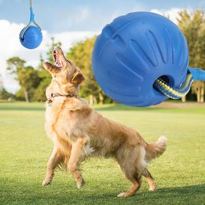 6cm 9cm Teeth Indestructible Bite Chew Toy Rubber Dog Puppy Funny Training Ball IQ Treat Toys Play Fetch Solid With Carrier Rope(China)