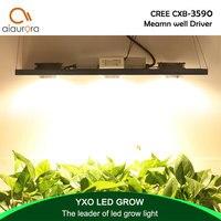 크리 어 cxb3590 300 w cob led 성장 빛 전체 스펙트럼 led 램프 38000lm = hps 600 w 성장 램프 실내 식물 성장 패널 조명