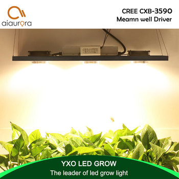CREE CXB3590 300W COB LED Grow Light Full Spectrum LED Lamp 38000LM = HPS 600W Growing Lamp Indoor Plant Growth Panel Lighting 450w cree cxb3590 cob full spectrum led grow light waterproof quicker heat dissipation energy efficient widely used in all stage