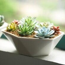 KEYBOX Garden Supplies Middle Garden Flower Pots Planters Ceramic Geometric Office Home Decorative Green Plant Pots Desktop