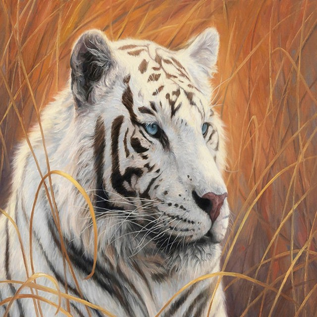 custom 3d wallpaper ferocious white tiger oil painting background