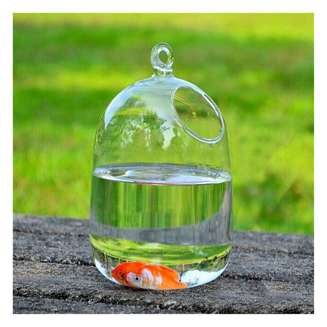 Szs Hot Hydroponic Wall Hanging Bubble Aquarium Glass Vase Fish Tank