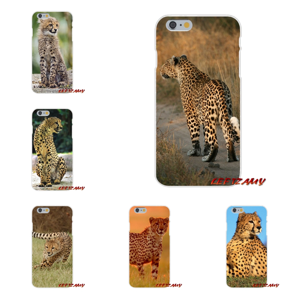 Baby Cheetah Full Speed Sunset Slim Silicone phone Case For Samsung Galaxy S3 S4 S5 MINI S6 S7 edge S8 S9 Plus Note 2 3 4 5 8