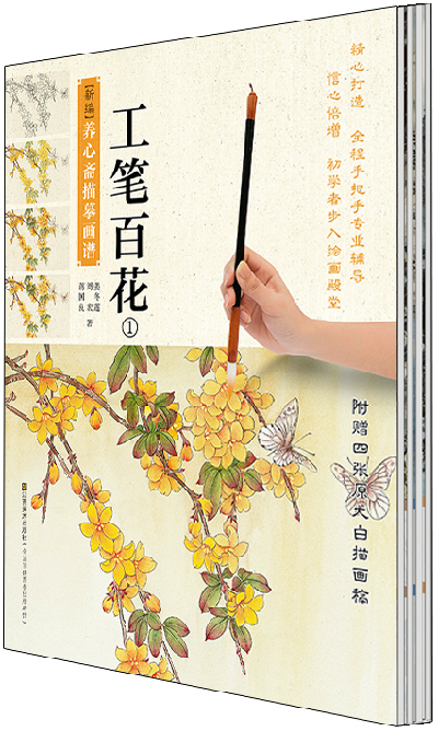 chinese painting textbook:Chinese traditional gongbi painting book for starter learners , Sketches book with color ,4books/se chinese meticulous claborate style painting book chinese traditional gongbi painting china ancient flower textbook
