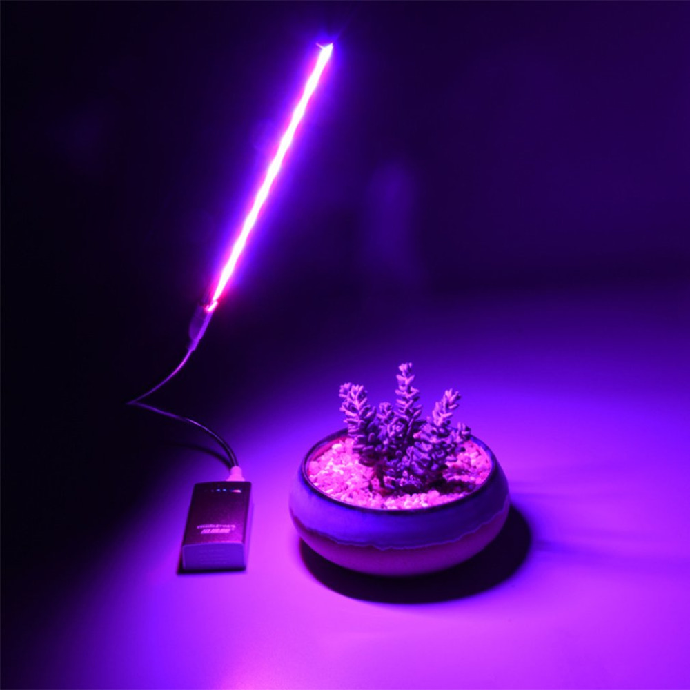 Indoor Imitation Sun Fill Light Full Spectrum Flower Fleshy Red Blue Light Usb Led Plant Growth Lamp