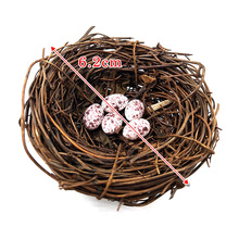 DIY Simulation Animal model Parrot Bird Nest Egg figurine Bonsai home decor miniature fairy garden decoration accessories modern
