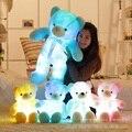 Большой 50 см Красочные Светящиеся Teddy Bear Световой Плюшевые Игрушки Kawaii Teddy медведь Мягкие Игрушки Кукла с Свет Симпатичный Медведь Плюшевые Игрушки
