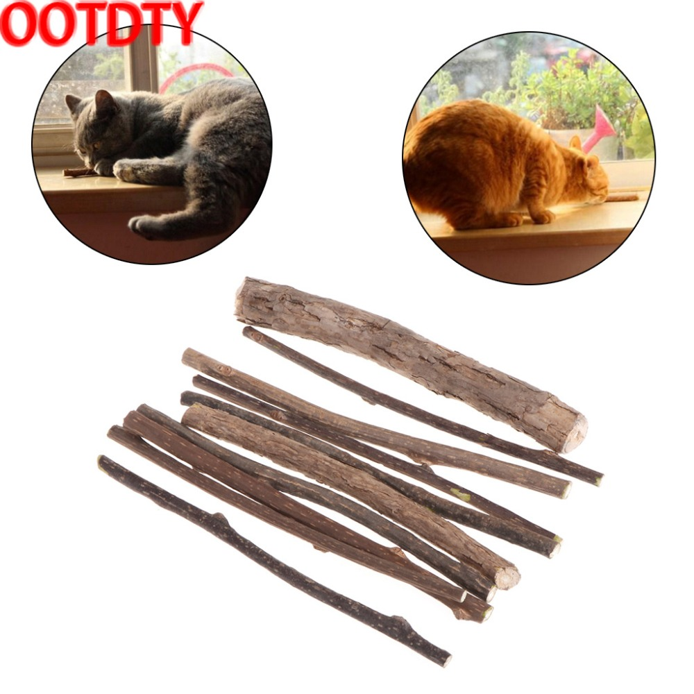 OOTDTY 10 Pcs Natural Polygonum Stick Catnip Cat Toys Cleaning Teeth Pure Molar Snacks