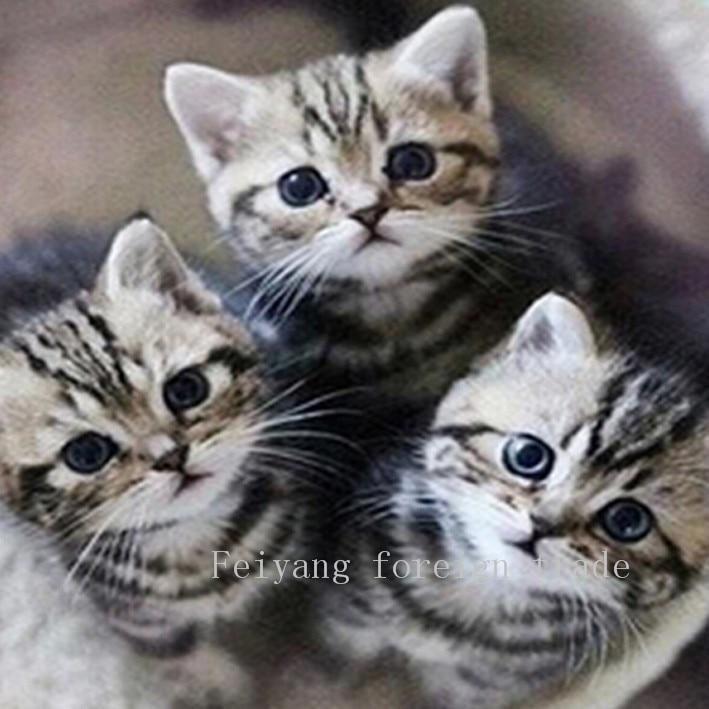 diy5d diamond painting Animals Cats knitting machine