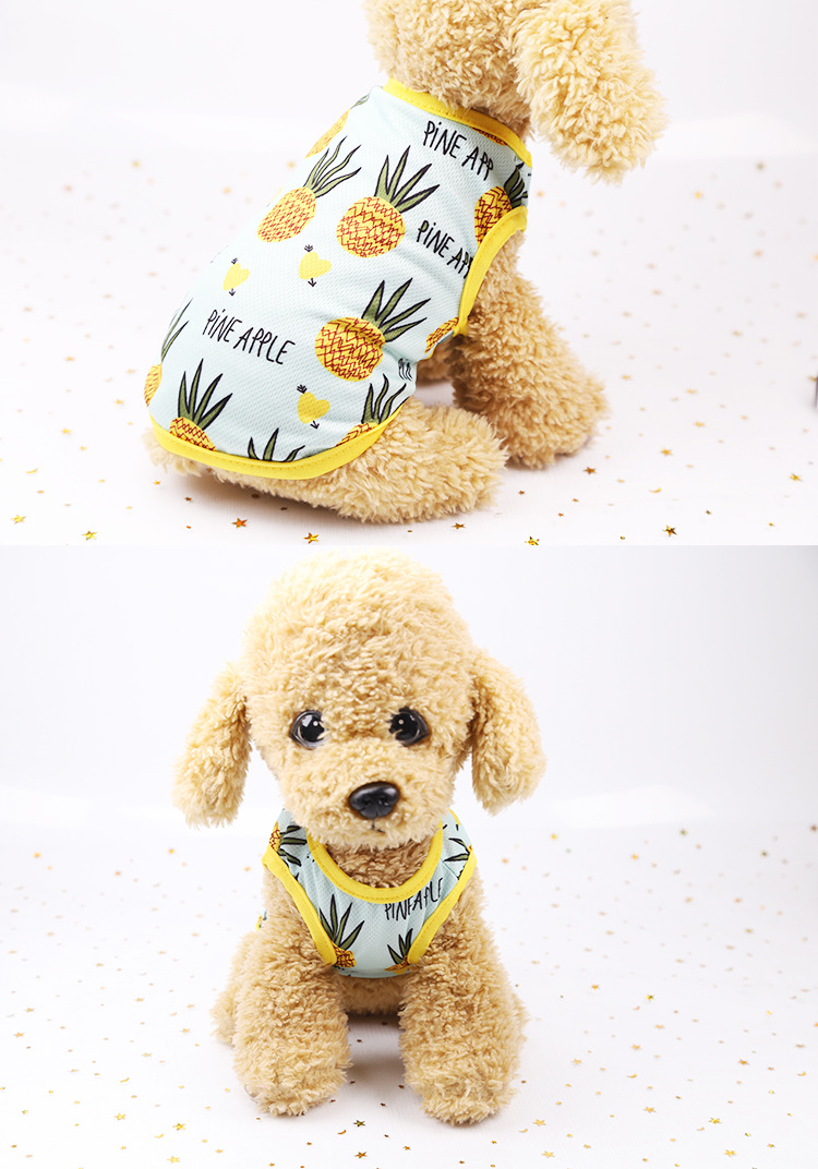Fruit Print Little Dog Summer Dress (13)