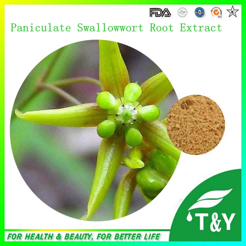 100% Natural Paniculate Swallowwort Root Extract 100g