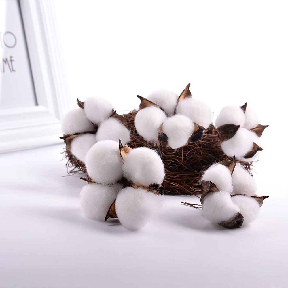5/10Pcs Natural Cotton Balls Dired flower Plants dry Artificial Flowers Wedding Party Christmas Home diy Decoration seven color(China)