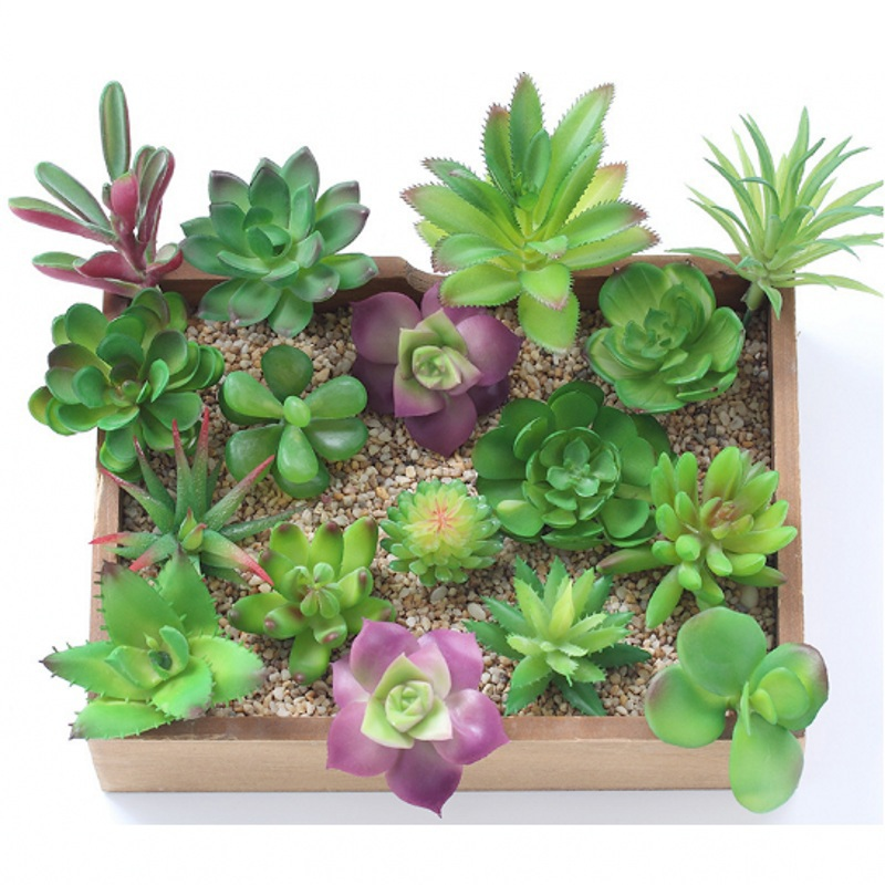 1PCS Mini Succulent Plants Palm Bonsai Local Landscape Artificial Fleshiness Cactus Plant Decorative Flower For Table Decoration