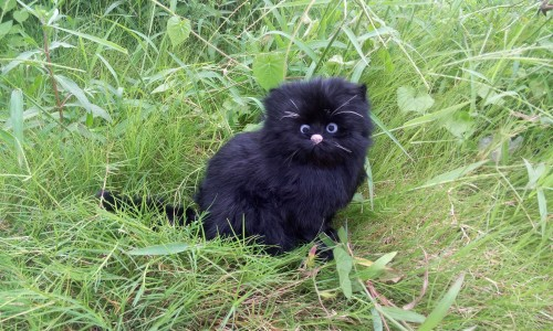 black simulation cat polyethylene & fur cute cat model gift about 27x19cm182 big sitting simulation white cat model plastic