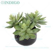 120 шт искусственное суккулентное растение эчеверия зеленый принц пустыня пластиковый цветок украшение стола зелень