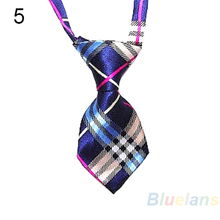Adjustable, trendy Dog Ties