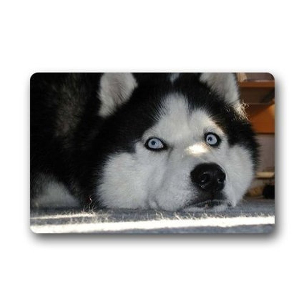 Rubber floor mats for dogs - Cute Siberian Husky Dogs Doormat Doormat Floor Mat Indoor Outdoor Mats Funny Welcome Entrance Mat 23 6 X 15 7 Inches