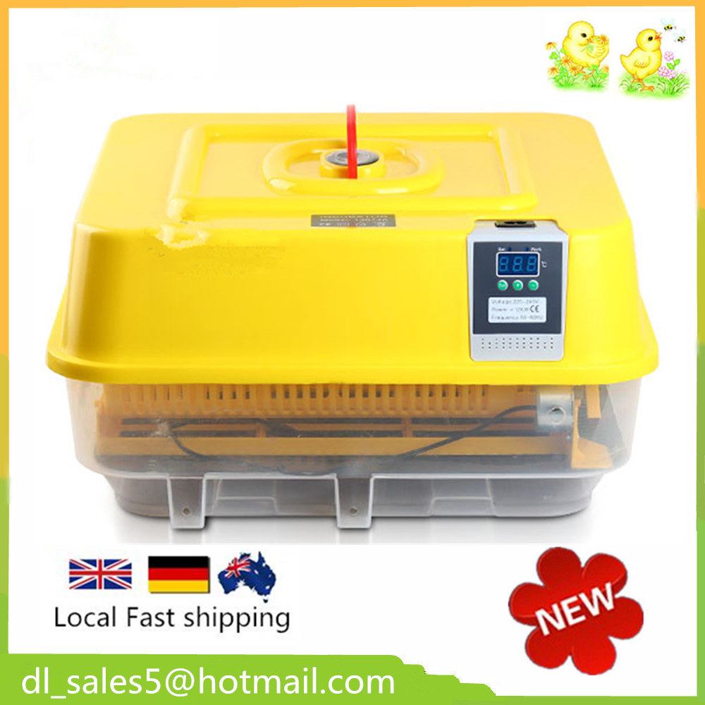 Mini egg incubator Cheap incubator for hatching eggs china cheap hathery 12 egg incubator automatic brooder machines for hatching eggs