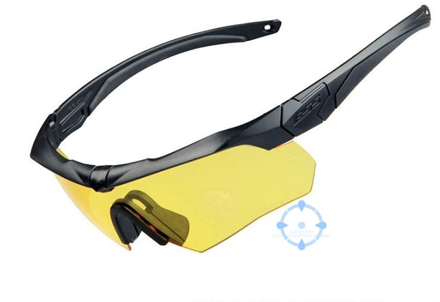 Online Shop US Stock ESS CROSSBOW Tactical Goggles, Army Sunglasses ...