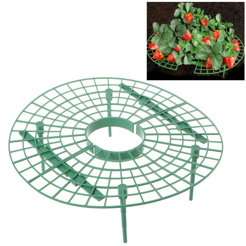 Image 2 - Plastic Handy Strawberry Supports Keep Fruit Fresh Non Rot Ground Climbing Vine Plant Vegetable Rack Home DIY Gardening Tool-in Plant Cages & Supports from Home & Garden