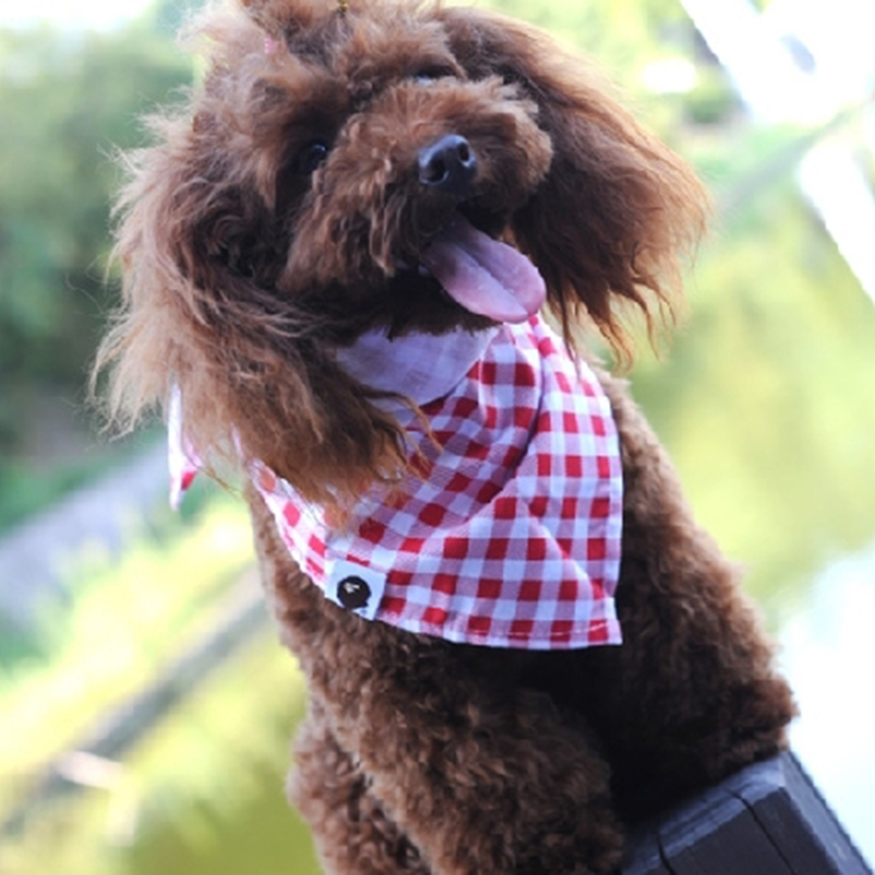PipiFren Dogs Scarf Grooming Products Collar Bandana Pets Accessories Cats Tie Wedding Shop Yorkshire Chihuahua pettorina cane