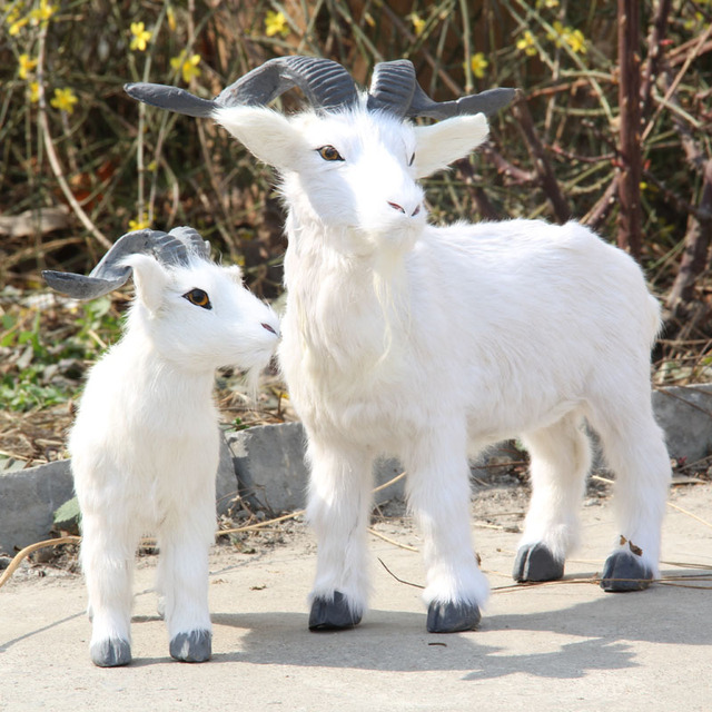 ZILIN-simulated-goat-fake-goat-model-for-shop-decoration-children-cognitive-products-two-sizes-for-option.jpg_640x640.jpg