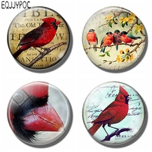 Cardinalis Fridge Memo Scripture Refrigerator Magnets Glass Dome Cute Cartoon Red Bird 30 MM Round Magnetic Stickers