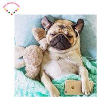 5d Diy Diamond Embroidery Fashion Diamond Painting Inlaid Decorative Embroidery hanging system animal A dog listening to music