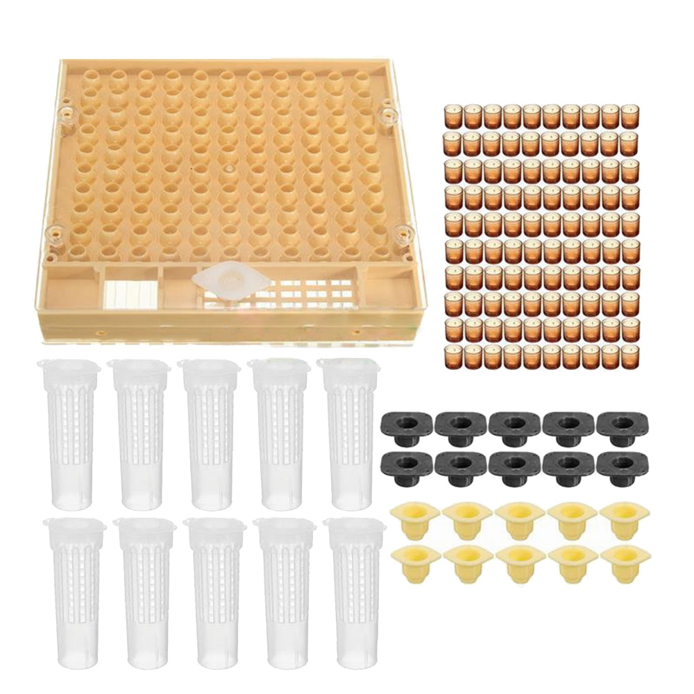 Beekeeping Tools Equipment Set Queen Rearing System Cultivating Box Plastic Bee Cell Cups Cup kit Queen Cage Feeding Tools in Beekeeping Tools from Home Garden