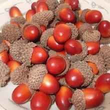10 шт., искусственные Имитационные Мини Желудь дуба гайка поддельные украшение в виде фруктов домашний декор супер яркие реалистичные