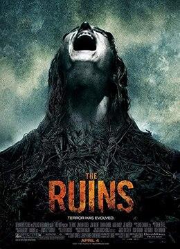 《恐怖废墟》2008年美国,德国,澳大利亚恐怖,惊悚电影在线观看