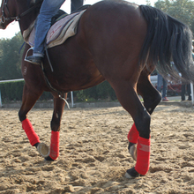 4 pcs Soft Flannelette Horse Legging Protector Riding Equestrian Equipment racing Exercise boots Bracers A
