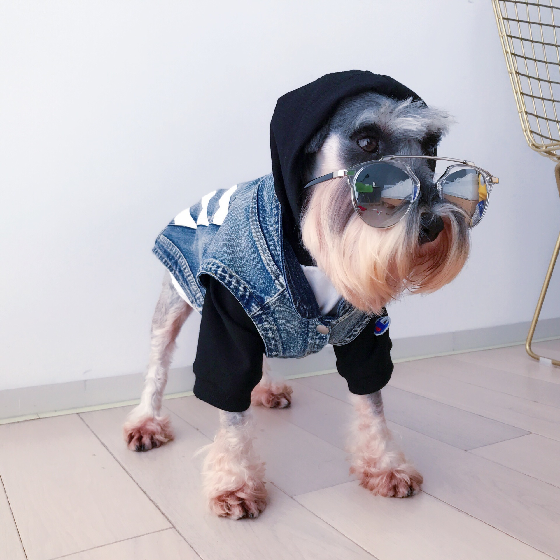 Fashion Print French Bulldog Denim Vest Dog Clothes For Small Dogs Striped Jacket For Chihuahua Pug Costume Dropshipping PC0930