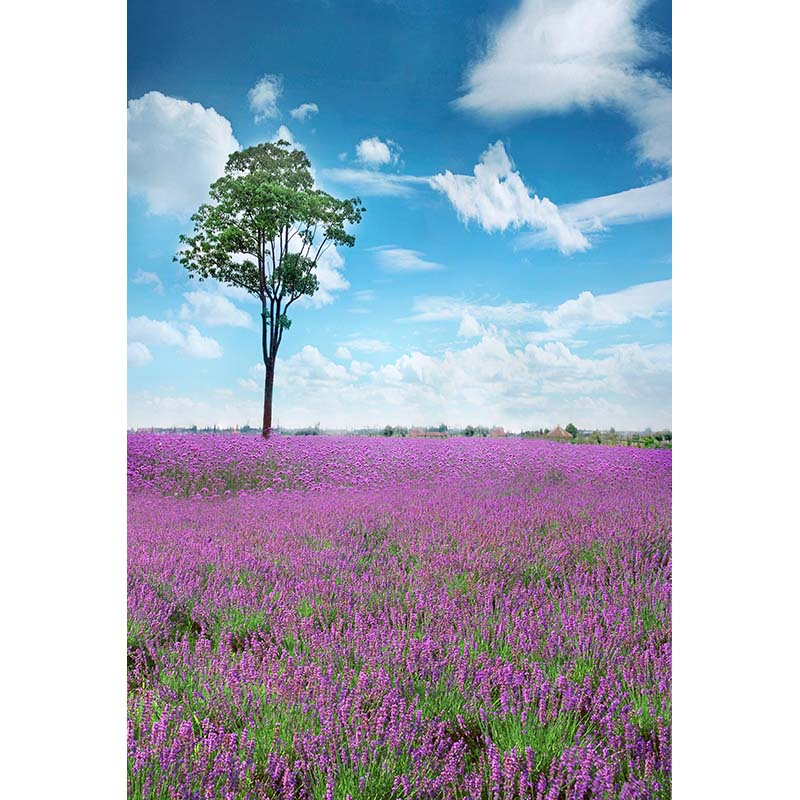 Customize vinyl cloth print lavender field scenic wallpaper photo studio background for portrait photography backdrops CM-5897