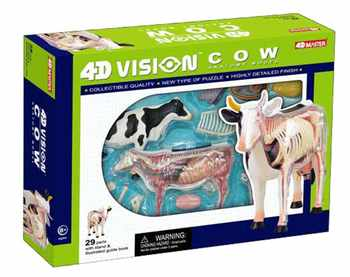 4D MASTER educational toys animal models assembled cows anatomical model free shipping - DISCOUNT ITEM  16 OFF Education & Office Supplies
