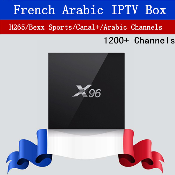 French IPTV Box X96 Android 6.0 TV Box with 1000+ NEOTV IPTV Europe French Arabic Spain Tunisia Morocco PayTV Smart Set top Box цена 2017