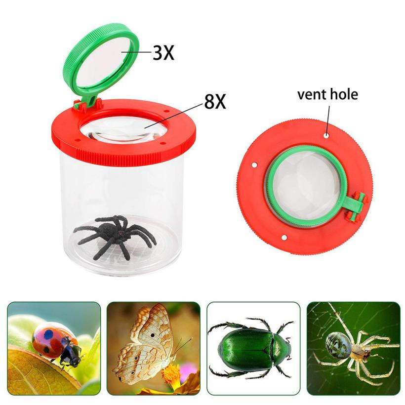 Magnifier Backyard Explorer Insect Viewer Collecting Kit For Children Gift Hot Sale