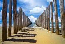 Laeacco Tropical Sea Beach Sand Wood Array Cloudy Blue Sky Scenic Photographic Backgrounds Photography Backdrops Photo Studio
