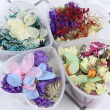 1 Box Dried Flowers Nail Decoration Mixed Preserved Flower With Heart-Shaped DIY Manicure 3D Art Decorations