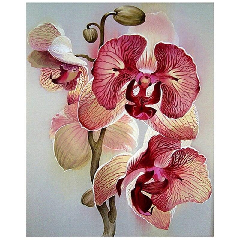 5D DIY completo cuadrado redondo diamante flor orquídea bordado punto de cruz diamante mosaico decoración regalo HOMFUN taladro cuadrado/redondo completo 5D DIY pintura de diamante