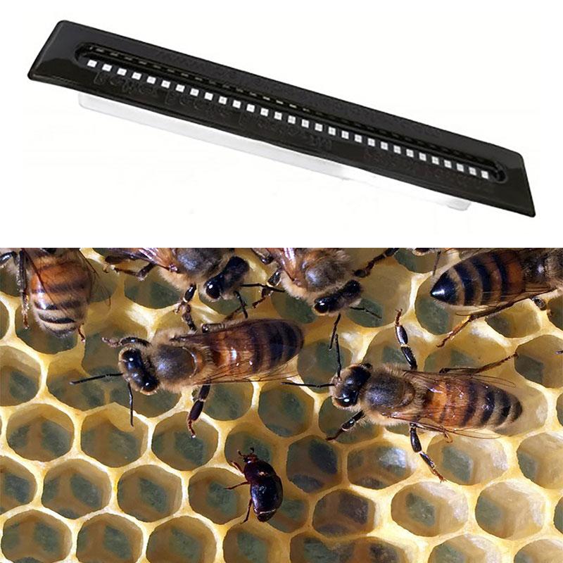 2pcs Small Bee Hive Beetle Blaster BeeHive Trap Beekeeping Equipment Tool New