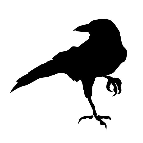 [B.Z.D] Free Shipping WALLu0027S MATTER Home Decor Crow Raven Blackbird Wall Stickers Wall Decals 10x9.5cm-in Wall Stickers from Home u0026 Garden on Aliexpress.com ...  sc 1 st  AliExpress.com & B.Z.D] Free Shipping WALLu0027S MATTER Home Decor Crow Raven Blackbird ...