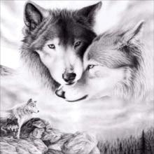 CaiLong1990 New 5d DIY Diamond Wolf Cross Stitch Embroidery Animal Mosaic Painting Rhinestone Decoration