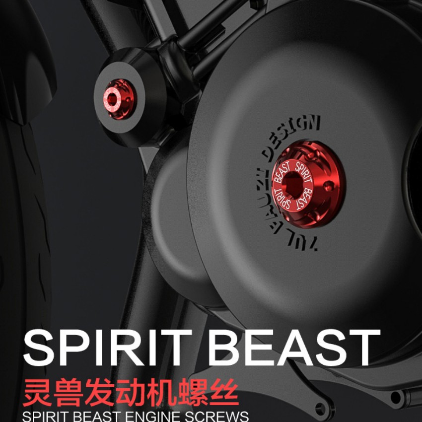 Дух зверя мотоцикл Эл двигателя с внутренним шестигранником винты прохладный стайлинга для Honda/cb190 2шт/много