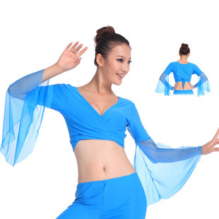 2019 Belly Dance Performance Top Hot Popular Sexy Women V-Neck Chiffon Lake Blue Belly Dance Tops Dancing Costumes High Quality