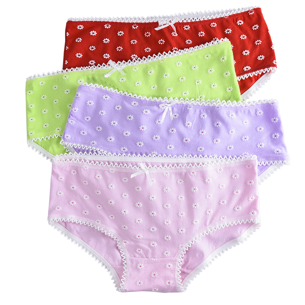 4 Piece/lot Soft Cotton Young Girl Briefs for Teenage Girls Panties Candy Colors Kids Underwear Pants Underpants 9-20T 4