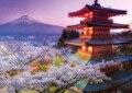 Educa Япония Mt. Fuji 2000 кусочки головоломки Jigsaw